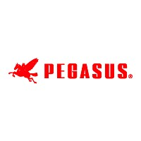 PEGUSUS