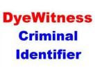 DYE WITNESS