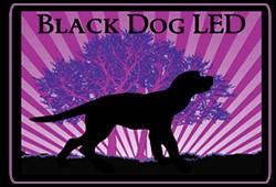 BLACKDOG LED