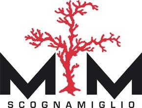 M M SCOGNAMIGLIO