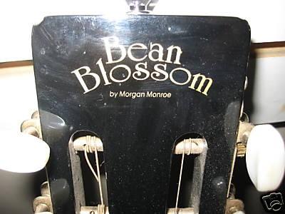 BEAN BLOSSOM GUITAR