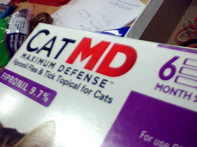 CATMD