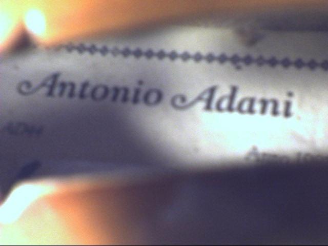 ANTONIO ADANI