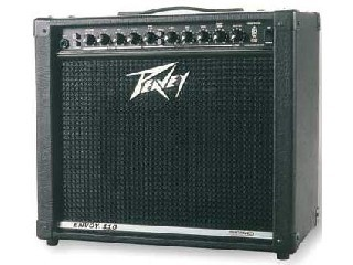 PEAVEY Electric Guitar Amp ENVOY 110