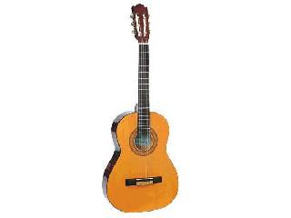 SUNLITE Acoustic Guitar GCN-800G