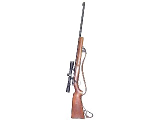 WINCHESTER Rifle 75