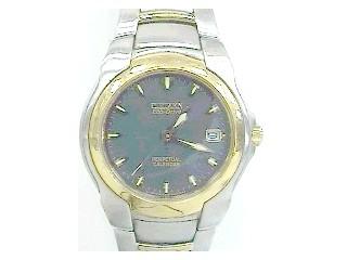 CITIZEN Gent's Wristwatch E710-H24385TA