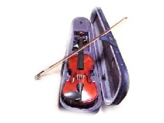 CREMONA Violin VIOLIN