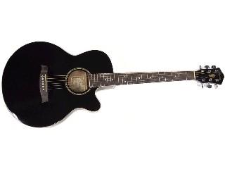 IBANEZ Acoustic Guitar AEG4JP-BK-27-01