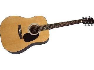 ROGUE MUSICAL INSTRUMENTS Acoustic Guitar RA-100D