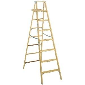 WERNER Ladder W368