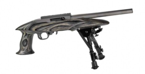 RUGER Pistol 22 CHARGER