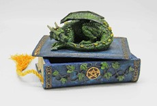 FANTASY GIFTS 2292 GREEN DRAGON BOX