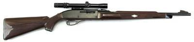 REMINGTON FIREARMS Rifle NYLON 66