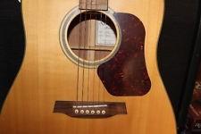 WALDEN GUITAR Acoustic Guitar D550