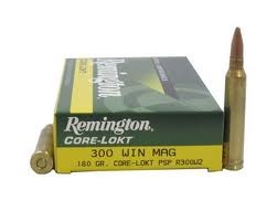 REMINGTON Ammunition R300W2