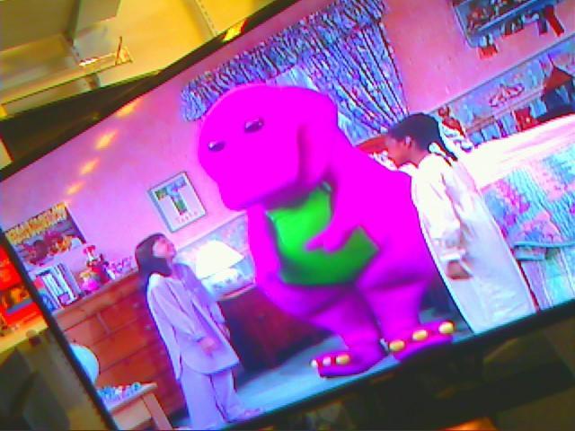 WESTINGHOUSE Flat Panel Television DWM48F1Y1