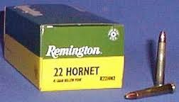 REMINGTON FIREARMS Ammunition R22HN2