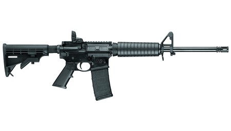 SMITH & WESSON Rifle M&P 15 SPORT II (10202)