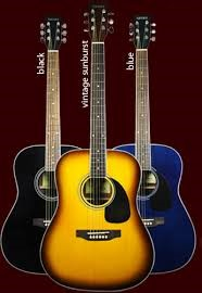 TANARA Acoustic Guitar TSD100 BK