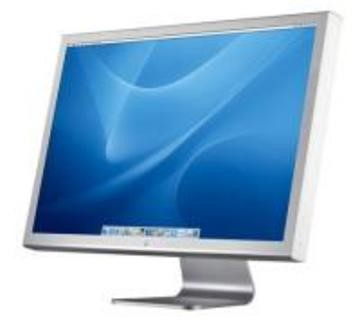 APPLE Monitor A1081