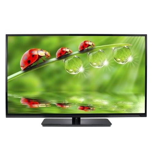 VIZIO Flat Panel Television E420-A0