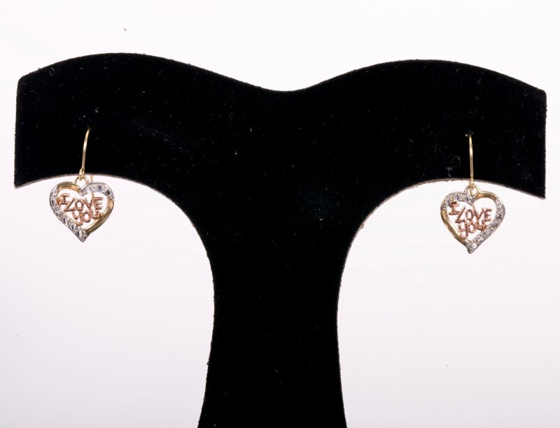 Lady's Earrings 10KYG  0.9g