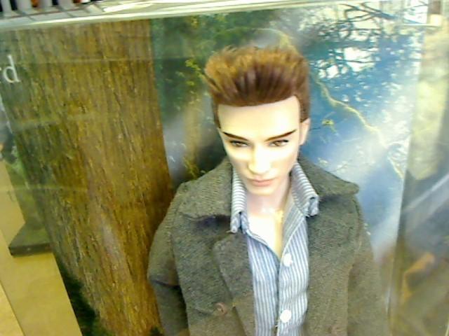 BARBIE Doll TWILIGHT EDWARD