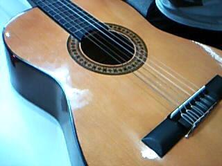 GREMLIN GUITAR Acoustic Guitar G15N