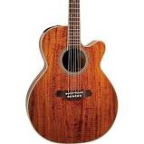 TAKAMINE Electric-Acoustic Guitar EF508KC
