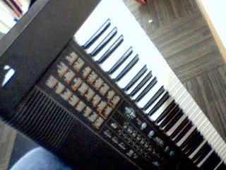 ROLAND Piano/Organ EM-303