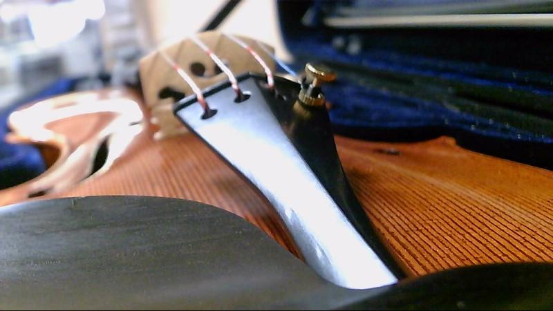 Ren Wei Shi Violin Artist 2 Intermediate Violin