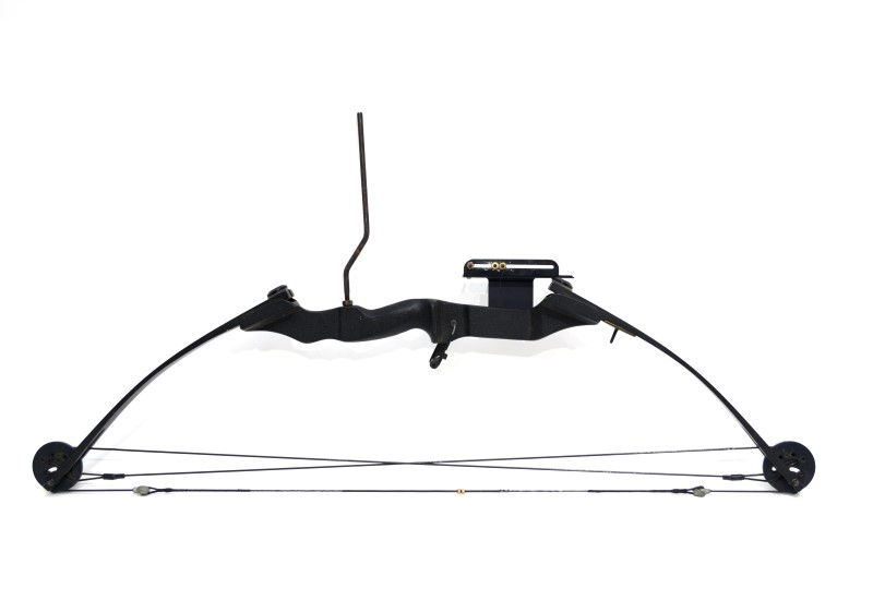 Alpine Archery Colt Youth Compound Bow Right Handed Flip Style Rest