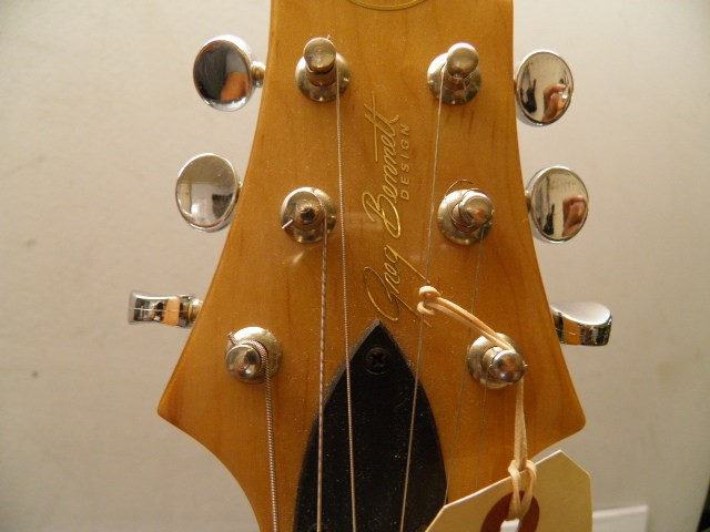 Samick (Greg Bennett Design) Guitar