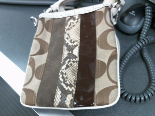 COACH Handbag F06W