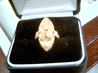 Lady's Gold Ring 10K 2 Tone Gold 4.9g