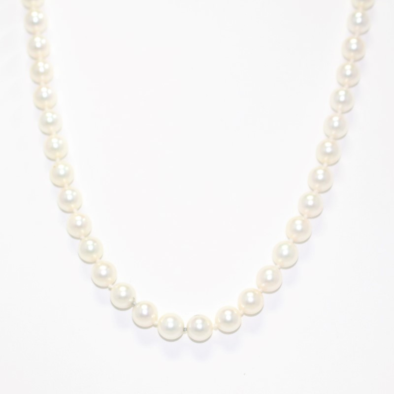 """19"""" 14K Yellow Gold and Pearl Matching Necklace and Stud Earing Set"""
