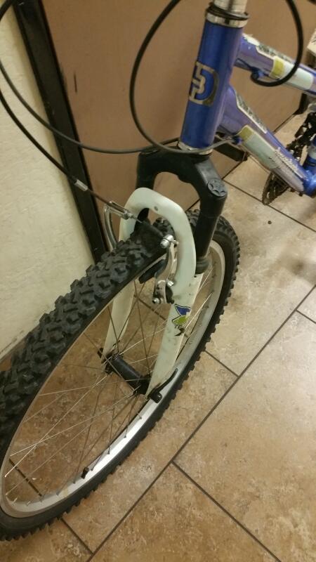 DIAMONDBACK BICYCLES Mountain Bicycle LUSTRE1