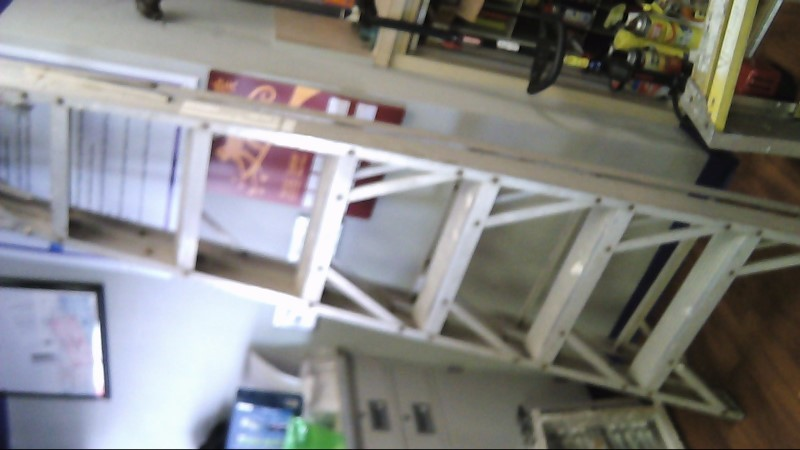 WERNER LADDER Ladder 8FT