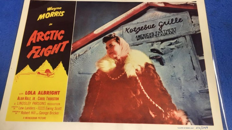 ARCTIC FLIGHT MOVIE MINI POSTER 14X11