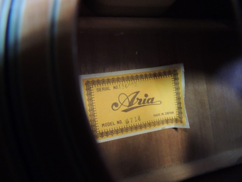 ARIA 6714 12 STRING GUITAR