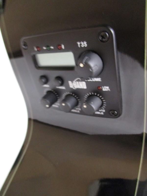 LUNA FAUNA DRAGON E/A GUITAR - USED - EXCELLENT W/HSC
