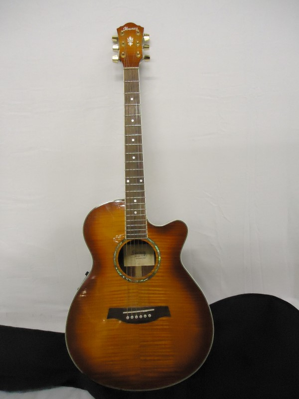 IBANEZ Electric-Acoustic Guitar AEG20E-VV-3R-01