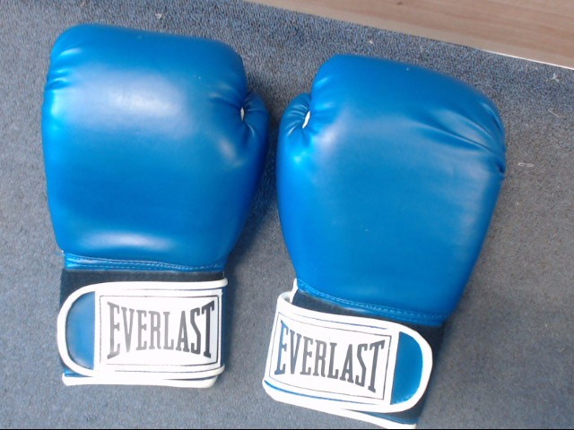 EVERLAST Indoor Sports 12OZ TRAINING GLOVES