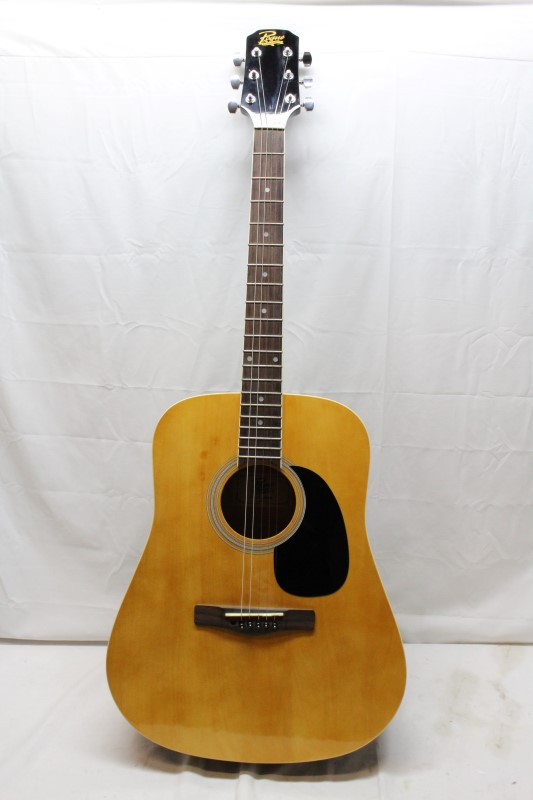 ROGUE MUSICAL INSTRUMENTS Acoustic Guitar RD80