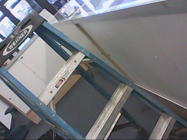 WERNER LADDER Ladder 4 FT