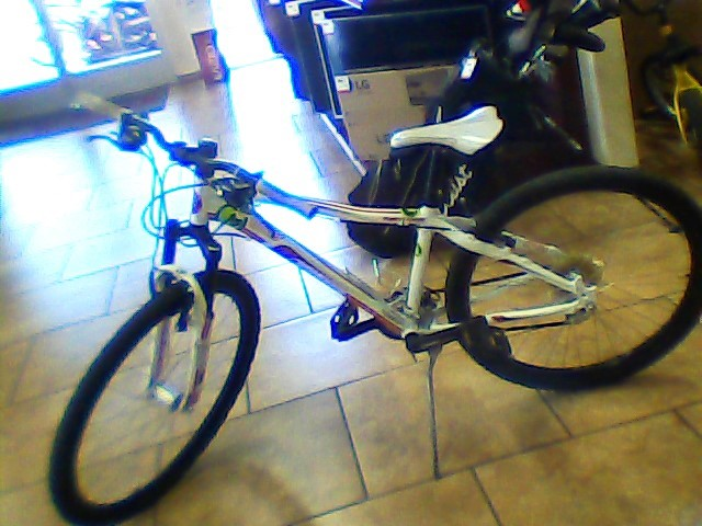 RALEIGH Mountain Bicycle EVA 4.0