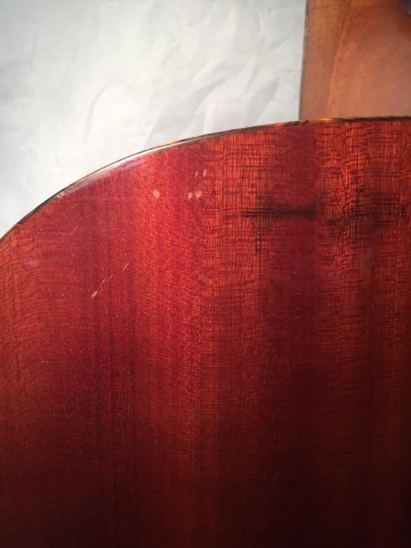WASHBURN GUITARS Acoustic Guitar DK20T