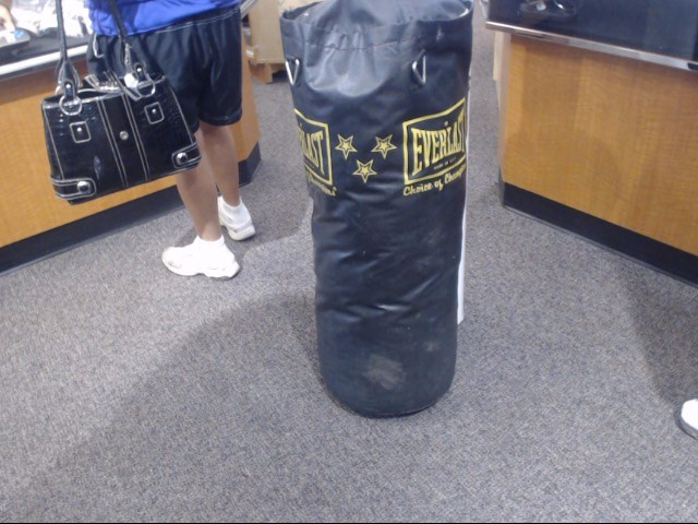 EVERLAST Indoor Sports 50 LBS PUNCHING BAG
