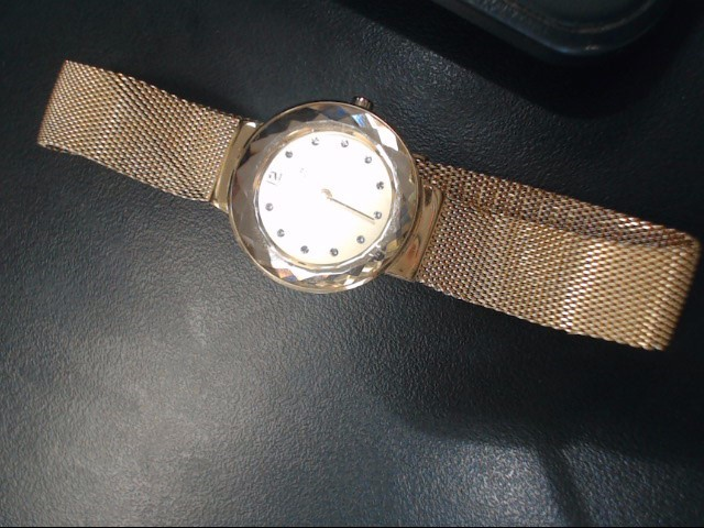 SKAGEN Lady's Wristwatch LADIES WATCH STAINLESS STEEL